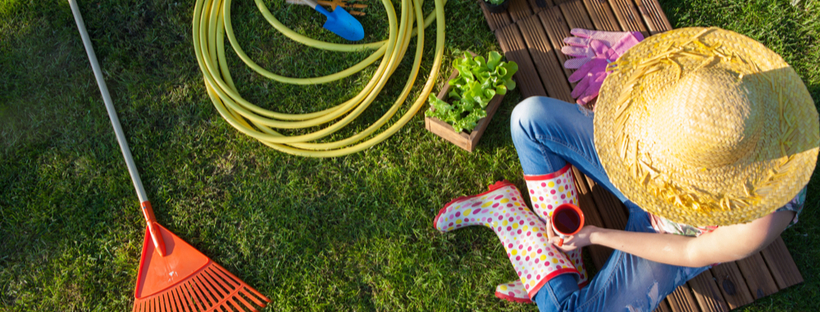 6 Things To Do In Your Backyard Garden This May